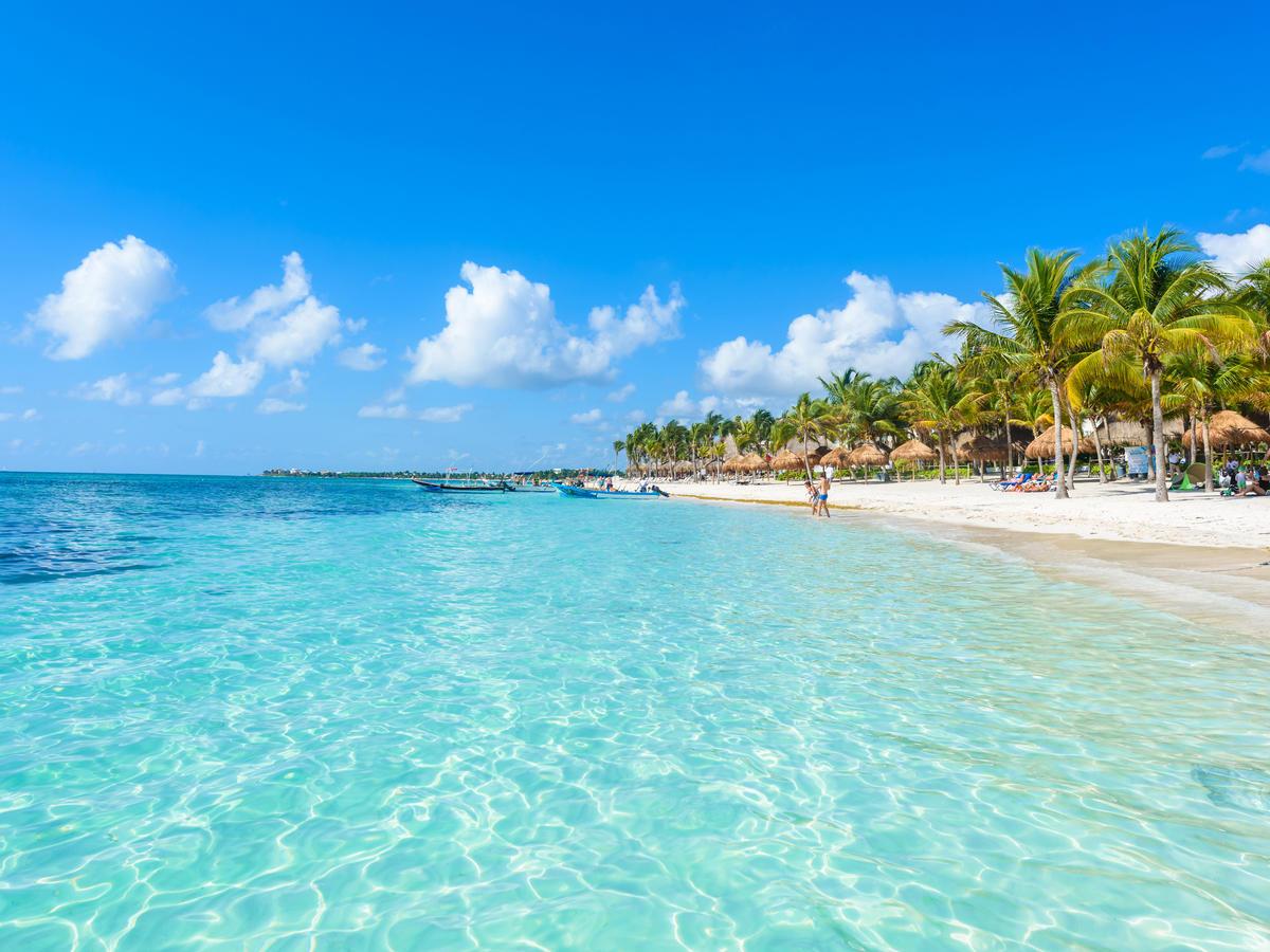 cancun-mexico-beach-palm-trees-647628562